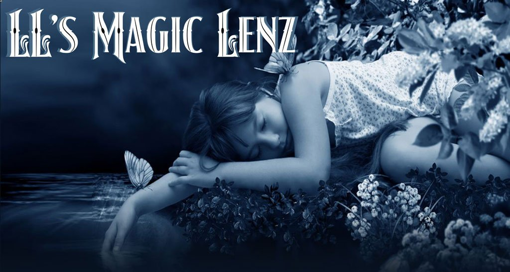 LL's Magic Lenz - Website Services + Social Media Services + Photography + Print and Digital Marketing + Graphic Design